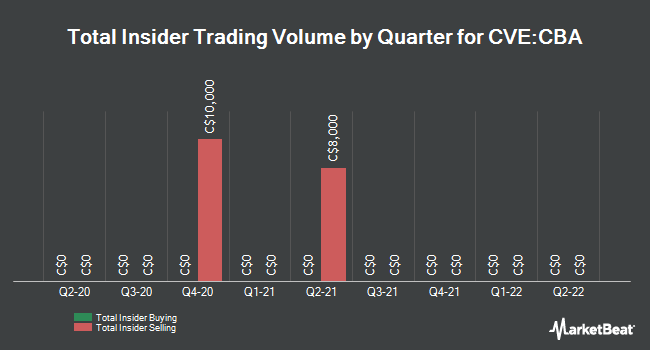 Insider Trades by Quarter for Champion Bear Resources (CVE:CBA)