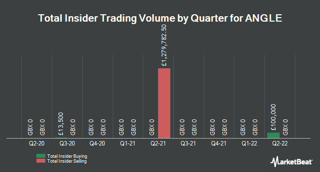 Insider Trades by Quarter for ANGLE plc (LON:AGL)