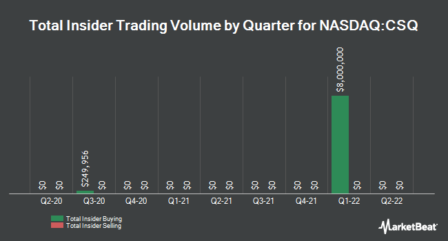 Insider Trades by Quarter for Calamos Strategic Total Return Fund (NASDAQ:CSQ)