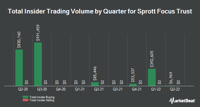 Insider Buying and Selling by Quarter for Sprott Focus Trust (NASDAQ:FUND)