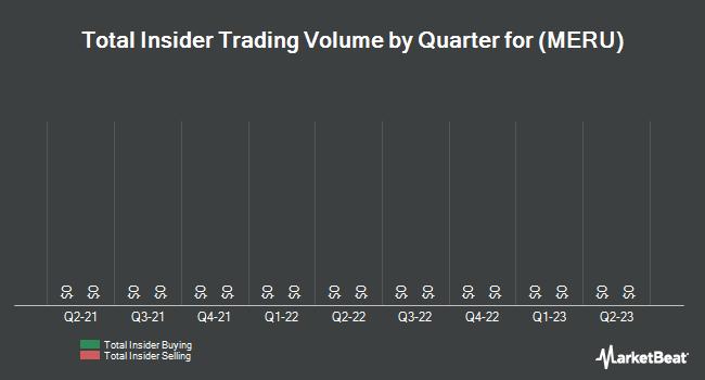 Insider Trades by Quarter for Meru Networks (NASDAQ:MERU)