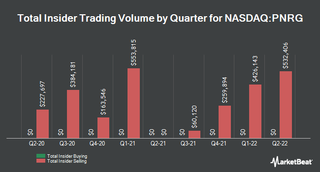 Insider Buying and Selling by Quarter for Primeenergy Resources (NASDAQ:PNRG)