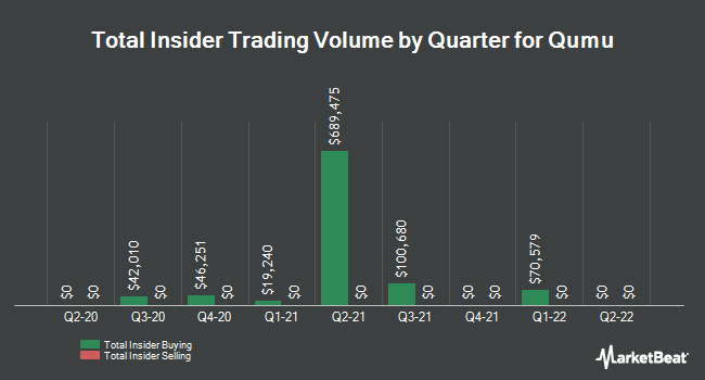 Insider Trades by Quarter for Qumu (NASDAQ:QUMU)