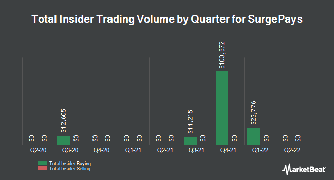 Insider Trades by Quarter for Synergetics USA (NASDAQ:SURG)