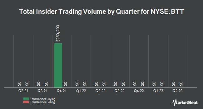Insider Trades by Quarter for Blackrock Municipal 2030 Targt Term Trst (NYSE:BTT)
