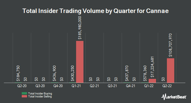 Insider Buying and Selling by Quarter for Cannae (NYSE:CNNE)