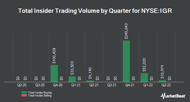 Insider Trades by Quarter for CBRE Clarion Global Real Estate Incm Fd (NYSE:IGR)