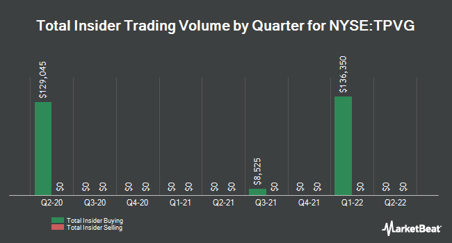 Insider Trades by Quarter for TriplePoint Venture Growth BDC Corp. (NYSE:TPVG)