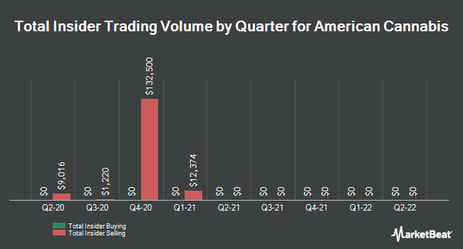 Insider Buying and Selling by Quarter for American Cannabis (OTCMKTS:AMMJ)