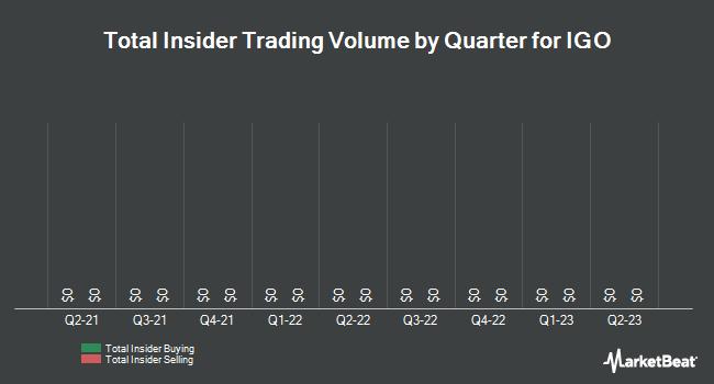 Insider Trades by Quarter for iGo (OTCMKTS:IGOI)
