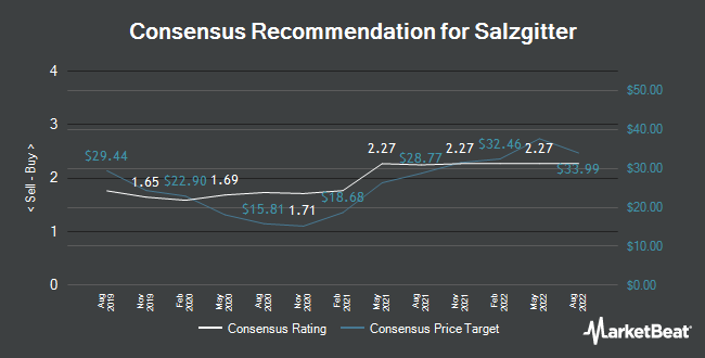 Analyst Recommendations for Salzgitter (ETR:SZG)