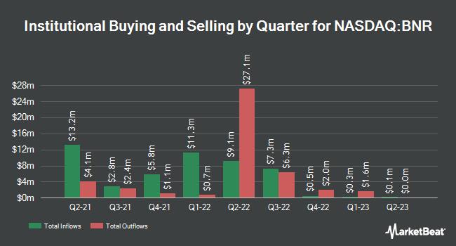 Institutional Ownership by Quarter for Burning Rock Biotech (NASDAQ:BNR)