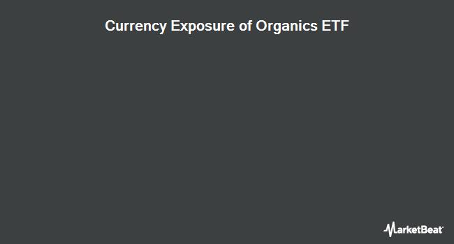 Currency Exposure of The Organics ETF (NASDAQ:ORG)
