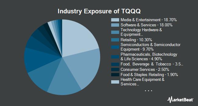 Industry Exposure of ProShares UltraPro QQQ (NASDAQ:TQQQ)