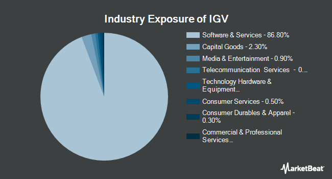 Industry Exposure of iShares North American Tech-Software ETF (BATS:IGV)