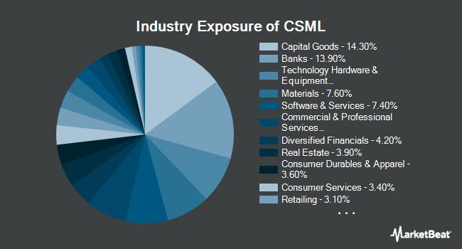 Industry Exposure of IQ Chaikin U.S. Small Cap ETF (NASDAQ:CSML)