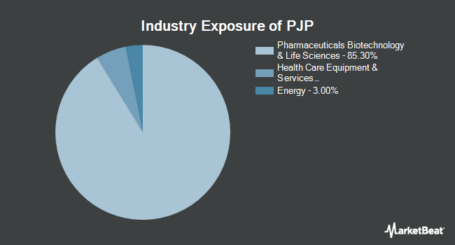Industry Exposure of Invesco Dynamic Pharmaceuticals ETF (NYSEARCA:PJP)