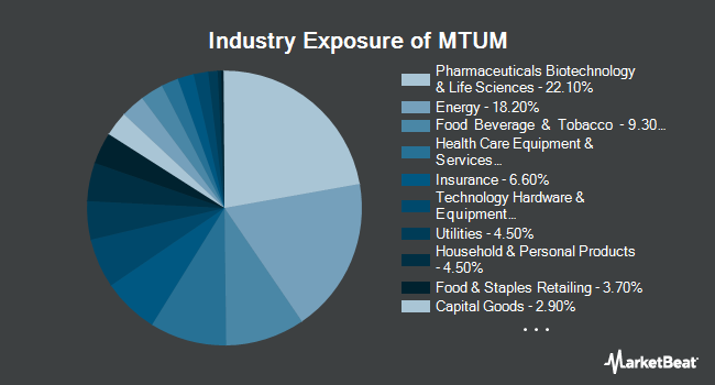 Industry Exposure of iShares Edge MSCI USA Momentum Factor ETF (BATS:MTUM)