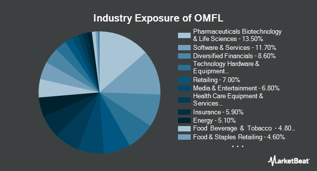 Industry Exposure of Invesco Russell 1000 Dynamic Multifactor ETF (BATS:OMFL)
