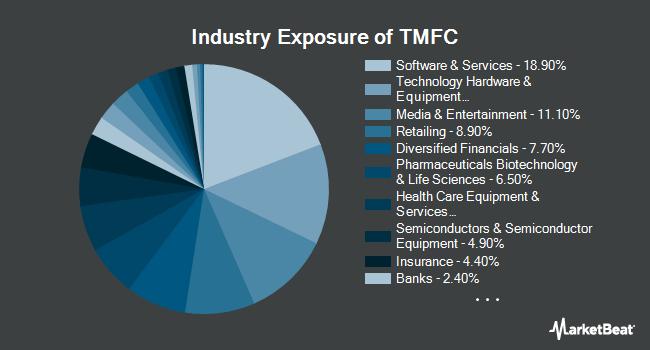 Industry Exposure of Motley Fool 100 Index ETF (BATS:TMFC)