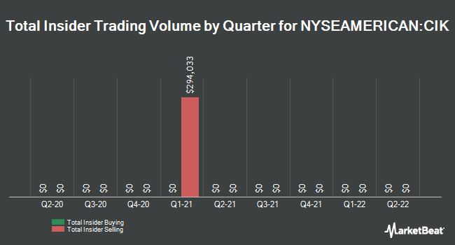 Insider Trades by Quarter for Credit Suisse AM Inc Fund (NYSEAMERICAN:CIK)