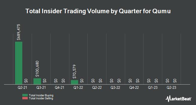 Insider Trades by Quarter for Qumu (NASDAQ:QUMU)